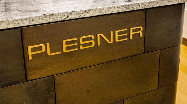 Plesner 2019